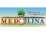 Логотип МЕДДОЛИНА
